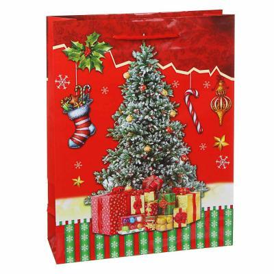 369-446 СНОУ БУМ Пакет подарочный, 30х23х8см, бумага, 8 дизайнов, арт.2021-19