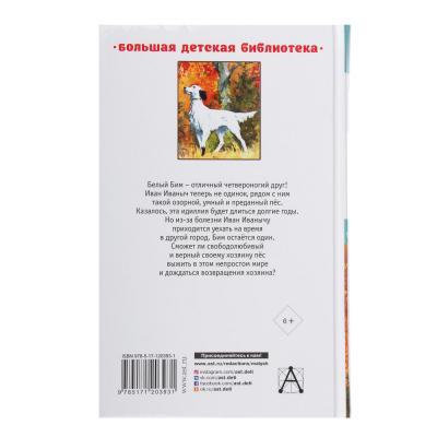 """837-162 АСТ Книга """"Большая детская библиотека"""", бумага, 352 стр., 13х20,5см, 4 дизайна"""